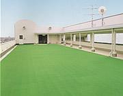 画像:屋上広場(4F)